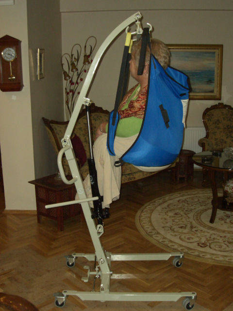 Disabled Products Aqualift Wheelchair And Hoist Buy