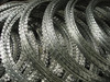 Razor barbed wire (concertina razor wire coil, barbed wire)