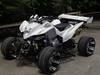 Racing EEC ATV GT250L-RE2 (Patent)