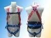 Safety harness JNK21059A