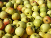 Fresh Apples Idared, Red, Golden Delicious, Muco Grany Smith