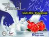 High quality Goat's milk powder with no goaty smell/taste