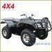 4*4 WD ATV Quad (400cc, 650cc, 800cc!!!!)