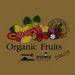Exotic Fruits and Vegetables from Thailand