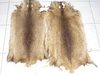 Nutria skins, real fur