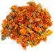 Organic medical herbs (valerian, calendula, mint, thyme) & beans