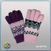Embroidered Glove