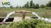 Solar Water Pumping Systems, solar pump, solar water pump