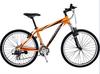 Mountain bicycle MTB