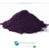 ACAI EXTRACT POWDER 4:1