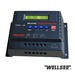 WELLSEE  2000W Solar Inverter with built-in controller
