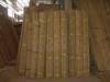 Canna di bamboo