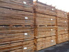 Steamed Beech Timber