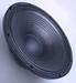 Audio speaker LTW-15PS75
