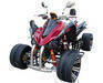 Quad (ATV 250M,water cooled) EEC