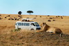 4 Days Kenya safari tour packages2014/15