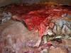 Salted beef skins