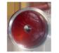 China Vertical slurry pump Manufacturer for sale