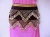 Belly Dance Costumes, Coin Bras, Skirt set