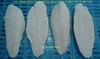Pangasius/ Basa/ Swai Fillet Well Trimmed Fillet