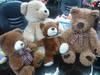 Plush Toys Bear