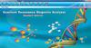 2014 latest quantum resonance magnetic health analyzer