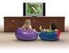 Whisper Ride Electric Flat Screen Television Lift