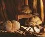 Matera's Bread
