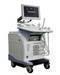 Ultrasound scanner (trolley-type)