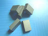 Carbide tips for cutting limestone SS10