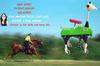 QQ horse