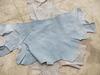 Bellies shoulders bottom wet blue
