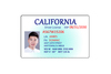 Polycarbonate PC material ID License card
