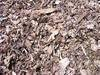 ALL KIND OFF STAINLESSSTEEL SCRAP, SECOND, PRIME, EXCESS