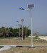 Solar street light (EL-SS101)