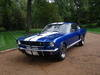 1965 Ford Mustang 289 Fastback Shelby GT 350 Model US$18,000 QUICKSALE