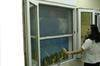 Roll up Fly Screens, Roll up Insect Screens, Mosquito Screens & Blind