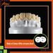 High transmittance detal ceramic zirconia block