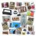 Commodity wholesale. toys, gloves, crafts, scarves, stationery etc.