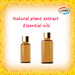JXNP Flavors and fragrances Natural essential oil in bulk