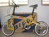 Birdy folding bike (FJ-BB-001)
