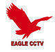 Cctv security surveillance H264 DVR