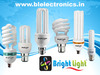 Bright Light LED & CFL