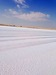 Deicing salt sea and rock salt