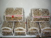 We sell anykinds of seashells & corals