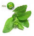 Stevia Extract Reb-A
