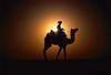 Intense India Rajasthan Tours