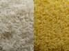 Yellow vs. White Corn, Crystal Beet White Sugar, Mini Rice, Wheat and Ba