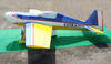 RC giant scale airplanes balsa Extra 330L 300cc