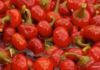 Cherry Peppers / Honey peppers